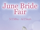 ☆June Bride Fair☆