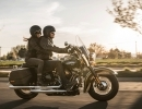 SOFTAIL START UP CAMPAIGN