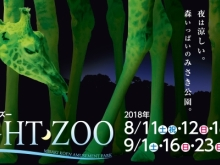 NIGHT・ZOO