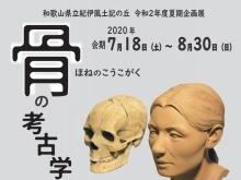 骨の考古学~「骨」から探る、わかやまの古代~