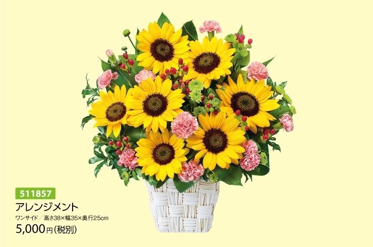 7月の誕生花 ひまわり等 花キューピット富山支部のニュース まいぷれ