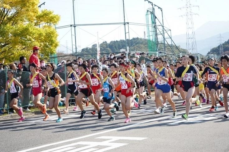 愛媛 県 ニュース 速報