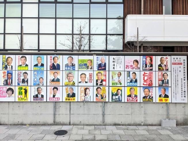 2021 西条 選挙 市議会 議員