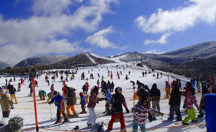 場 天気 スキー 九重