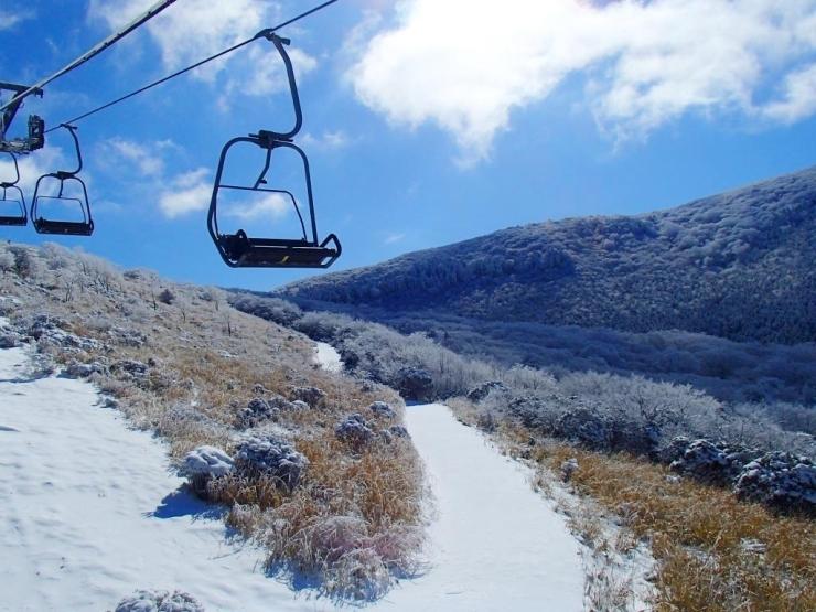 森林 スキー くじゅう 場 公園 スノーボードが滑りやすい
