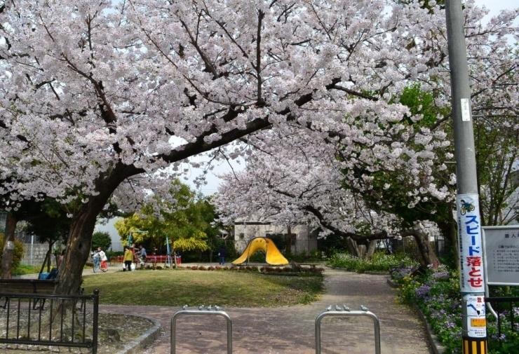 唐人町公園