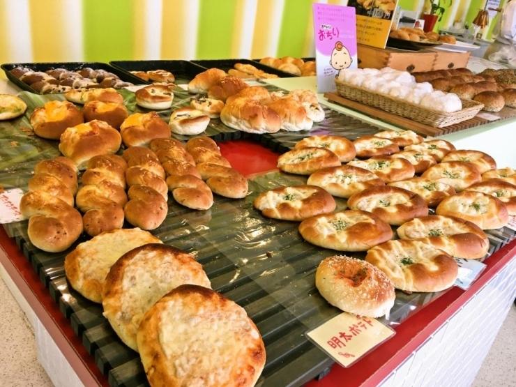 すべて100円 bakery shop favori ファヴォリ でパンランチ 木花