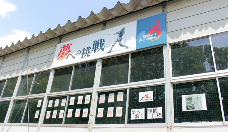 D.lead Academy(ドリードアカデミー)