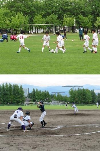 公園 ジム 総合 運動 県