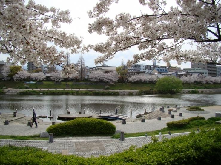 美野島南公園
