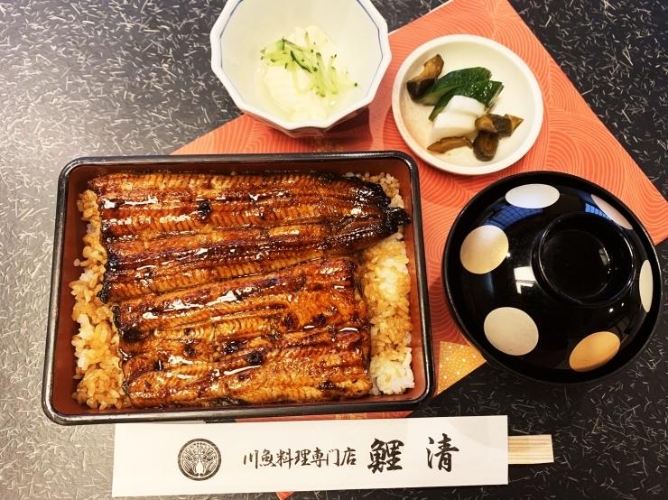 川魚料理 鯉清
