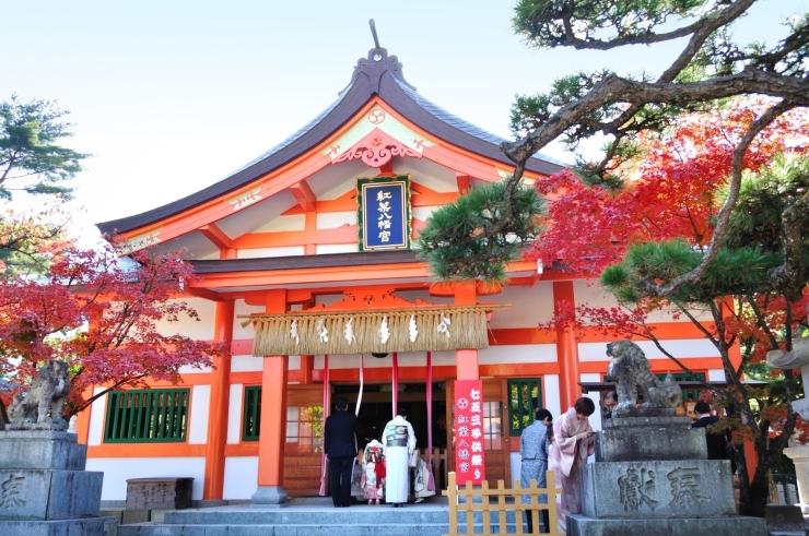 【早良区高取】紅葉八幡宮