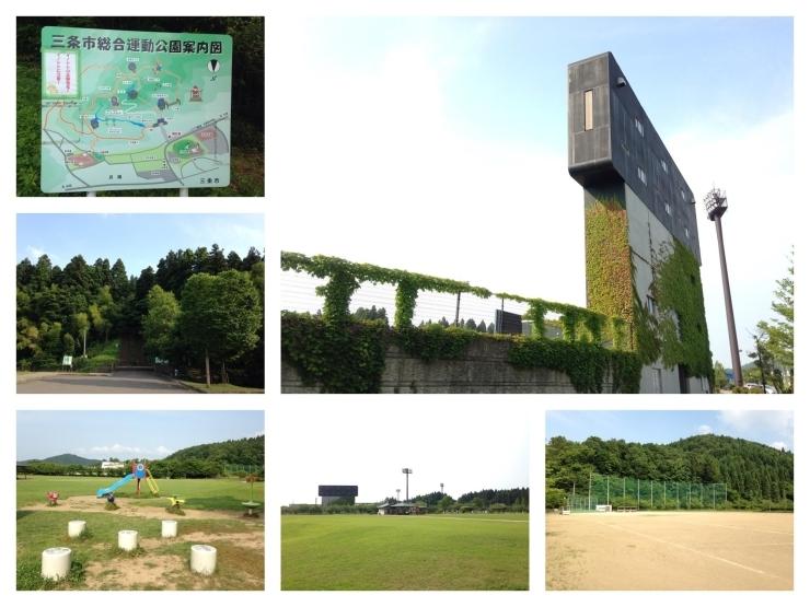 三条市総合運動公園
