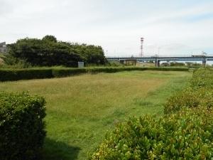 江戸川区河川敷緑地 河原