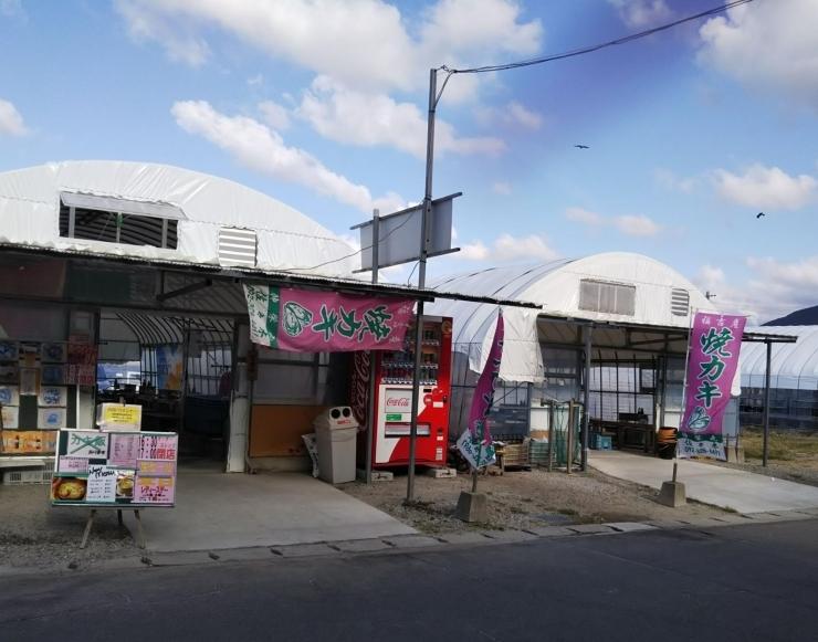 牡蠣の佐々木・伸栄丸(福吉漁港)