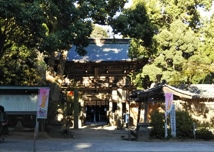 櫻井神社(さくらいじんじゃ)