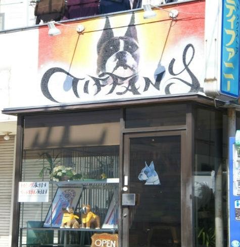 ドッグストア ティファニー 市川大野店