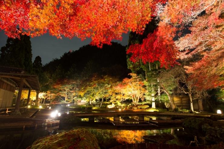 しょうざんリゾート 京都