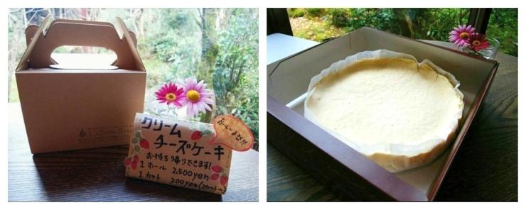 瀬々らぎの森 ラ プティトゥ ポルト(せせらぎの森)//自家製クリームチーズケーキ