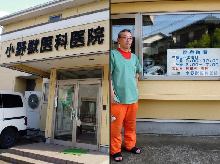 小野獣医科医院